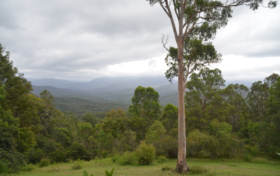 The view from Mountain Cottage with cloudy skies