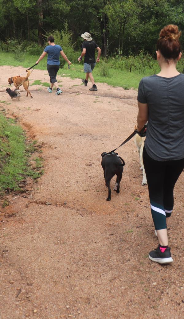 Family enjoying a walk at Rock Lily